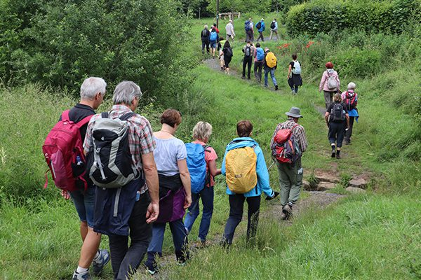 Der Weg geht durch viele grüne Oasen in der Stadt. Hier wird der Quellbach auf Trittsteinen überquert.