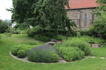 Kräuterbeet im Klostergarten.