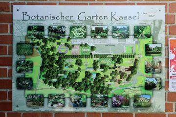 Der Übersichtsplan befindet sich am Haupteingang des Botanischen Gartens.