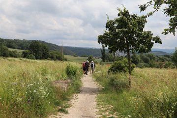 Durch blühende Wiesen führt der Weg nach Wolfsanger.